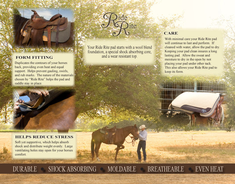 ride rite brochure-2.jpg